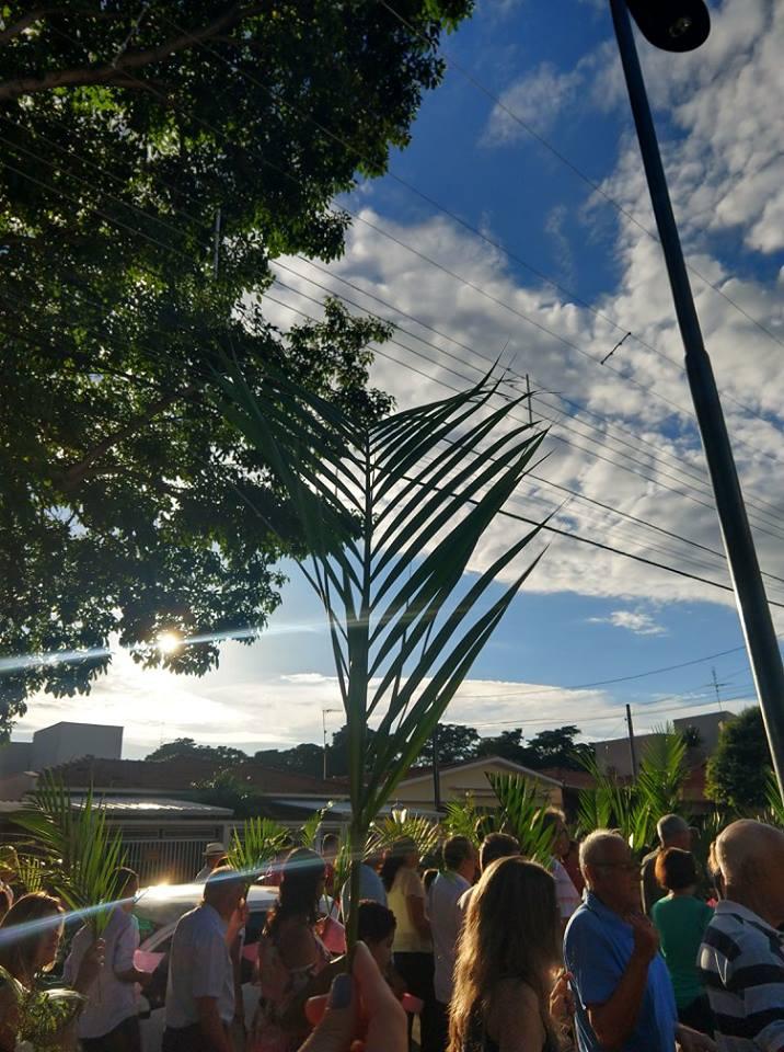 Domingo de Ramos: Início da Semana Santa